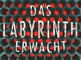 Rainer Wekwerth: Das Labyrinth erwacht