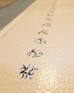 Blauer Druck auf dem weißen Ledereinband von Brayan's Gold (limitiert)
