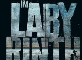 Die Auserwählten – Im Labyrinth von James Dashner