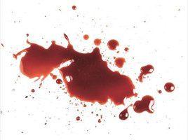ywen_pure_blood_titel
