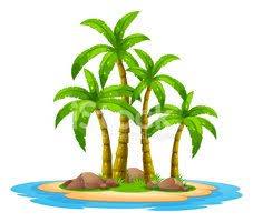 Auf Reisen lesen unter Palmen