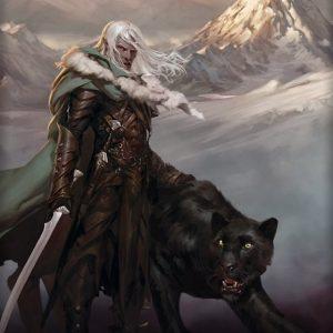 Drizzt und sein Panther Guenwhyvar (Der Fluch der Dunkelelfen)