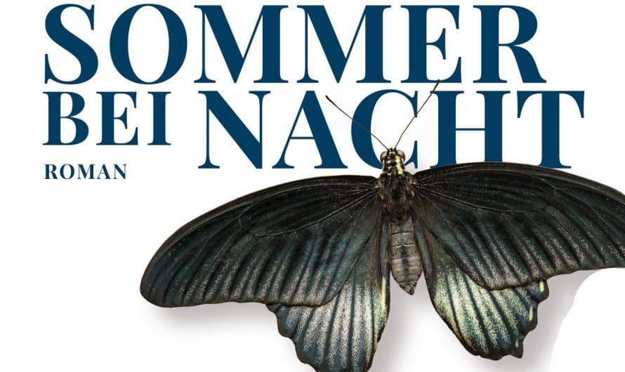 Sommer bei Nacht von Jan Costin Wagner